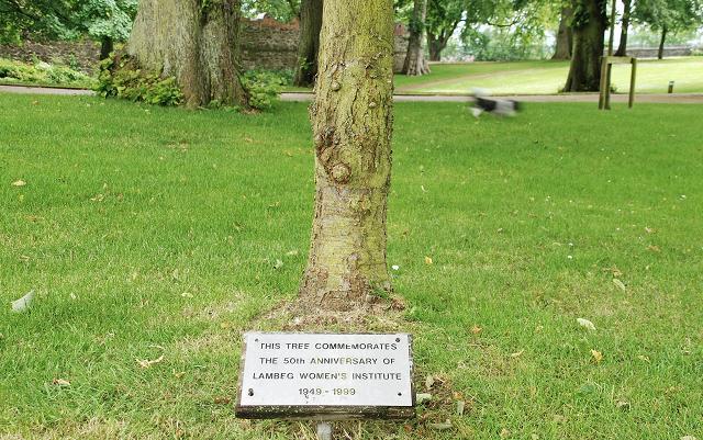 tree plaque